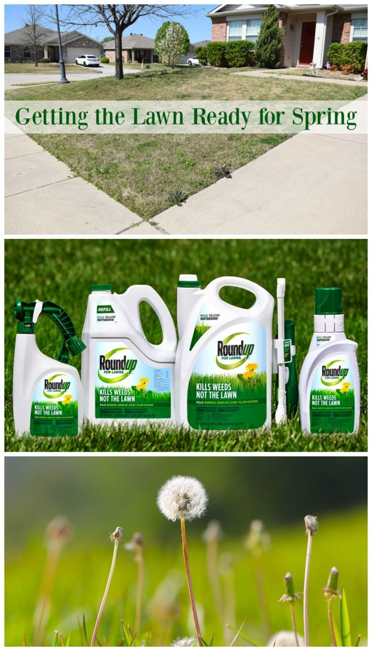 Are you ready to drawtheline on weeds in your yard this spring? See what we're doing to get ready for the spring season to add curb appeal to our home! AD
