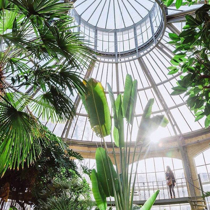 Lovely Green Nature Conservatory Amsterdam Bicycles Your Favorite Your Holland Landscape