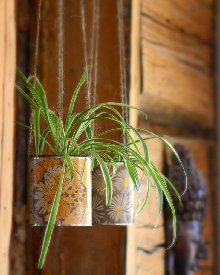 Une plante suspendue DIY dans une boite de conserve récup     A DIY suspended plant in a tin can upcycling