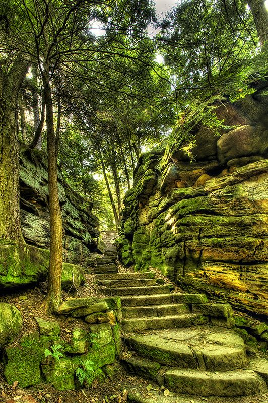˚The Stairs at Cuyahoga Valley National Park - Cleveland