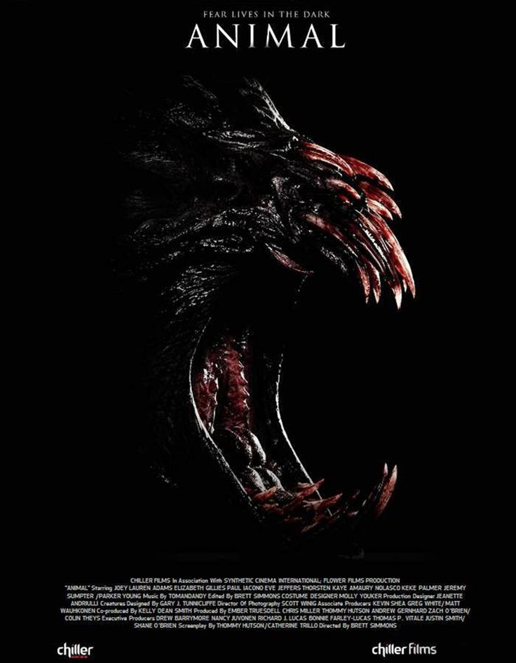 "Fear Lives in the Dark...Trailer for upcoming horror movie ""Animal"" 2014:  A…"