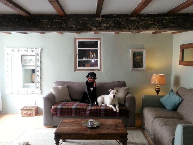 - gorgeous dog friendly cottage ( bring your own) these are mine!