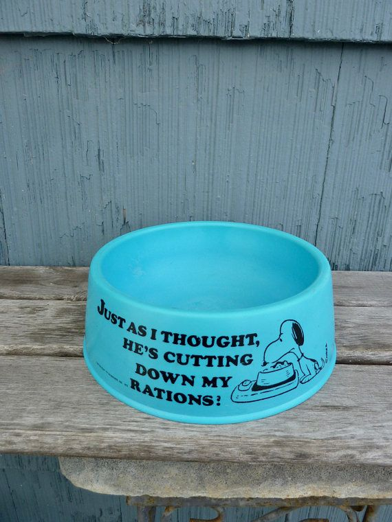 Snoopy S Suppertime Dish Peanuts Dog Food Bowl Charles Schulz