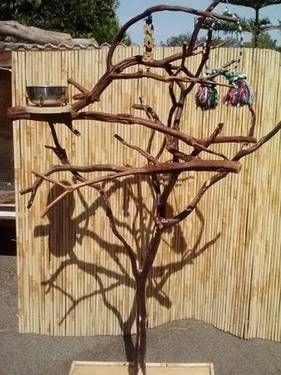 bird toys made of branches   Bird perch 6ft. X 4ft. Manzanita TRADE for birds