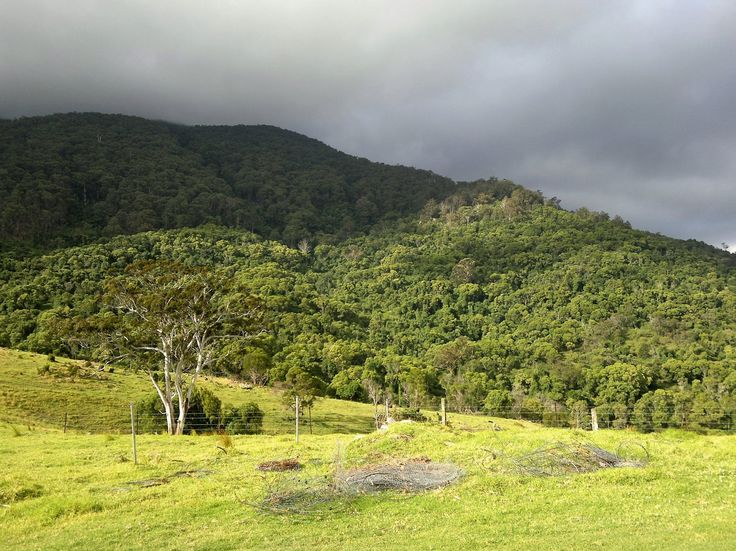 Stunningly wild and beautiful view around Tilba