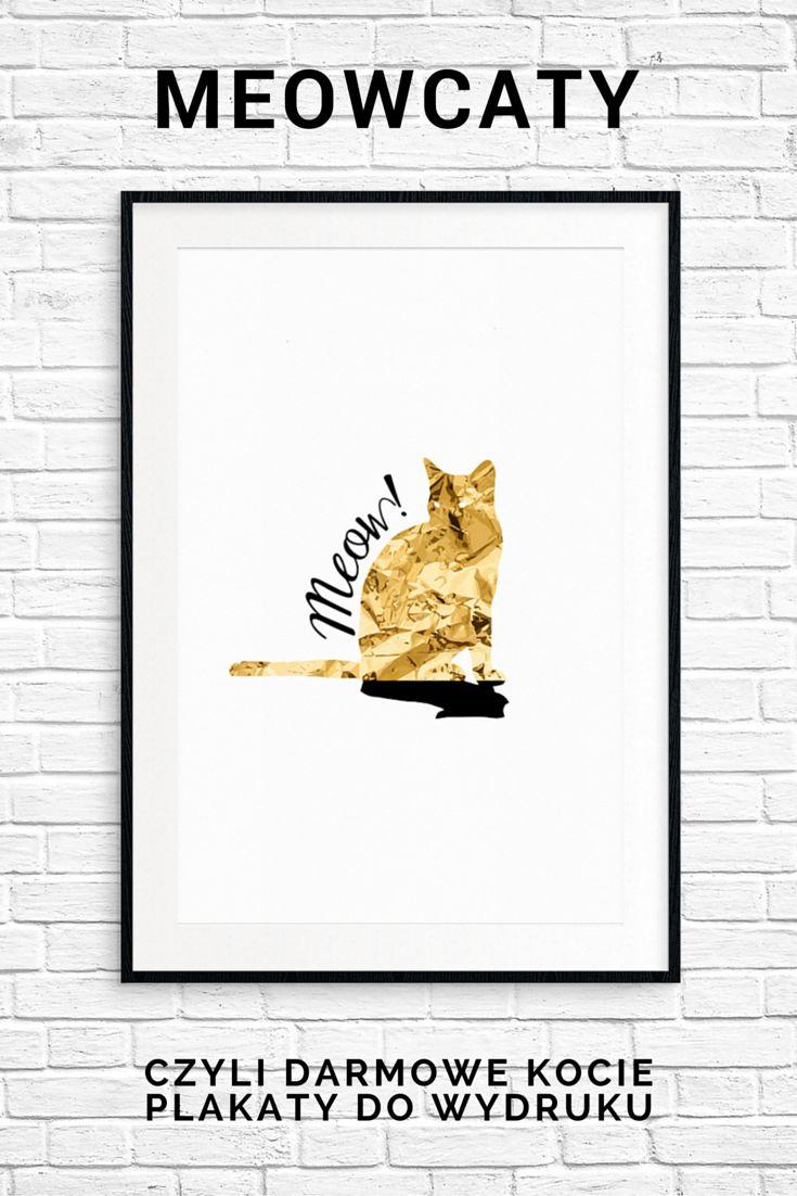 Darmowy plakat kot do wydruku #kot #cat #plakat #poster #free #printable