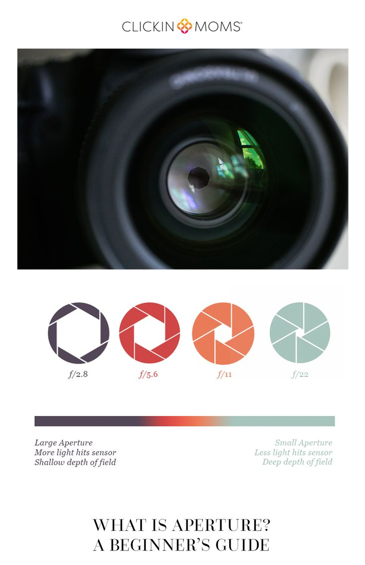 aperture and shutter speed relationship questions