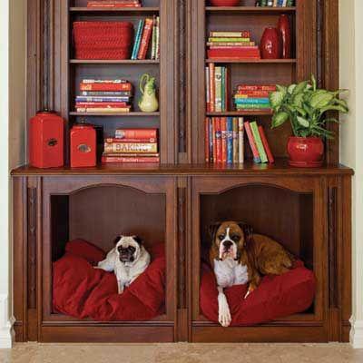 I need a book shelf!