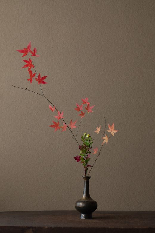 一日一花 One Flower a Day  –  川瀬敏郎 Kawase Toshiro