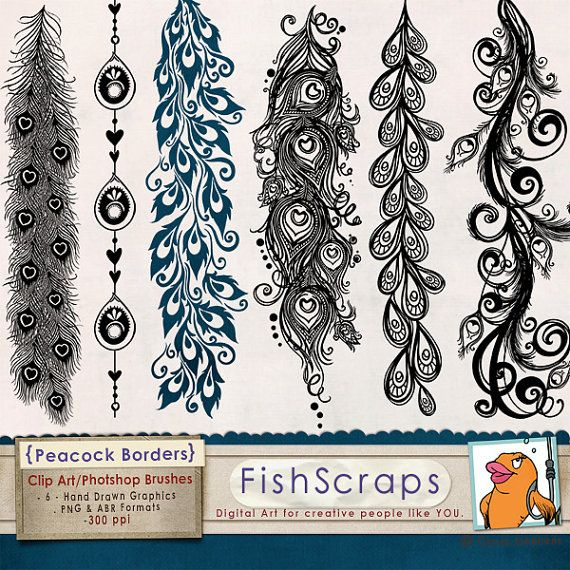 Clip Art Borders - Peacock Flourish - PNG & Photoshop Brushes - Decorative Page Borders for Wedding Invitations, Anniversary Cards