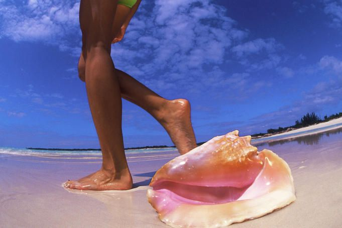 Awesome, awesome short discriptions on every carribean island to see which best suits you!!