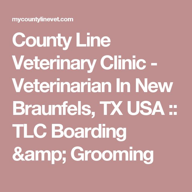 County Line Veterinary Clinic - Veterinarian In New Braunfels, TX USA :: TLC Boarding & Grooming