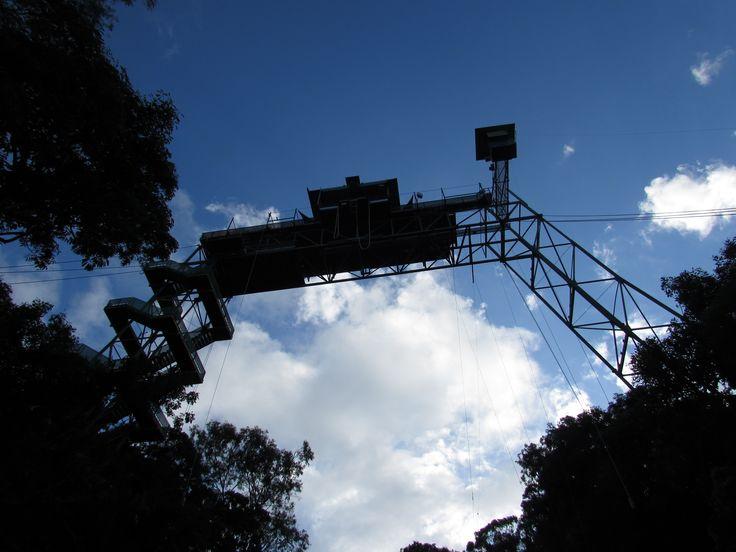 Bungy Jump Far North Queensland