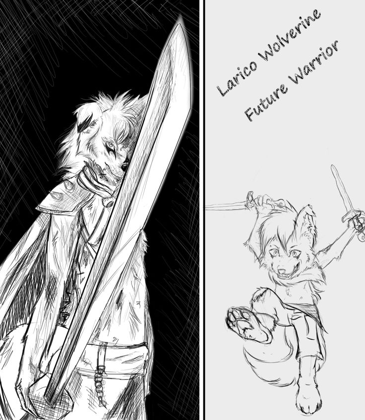 Larico Wolverine,   Son of Remon. Left - 15 years old Right - 8 years old.  He's a cute and hyperactive pup who has a addiction for swords. Ofcourse at that young age of 8 (present age) he carries foam swords.