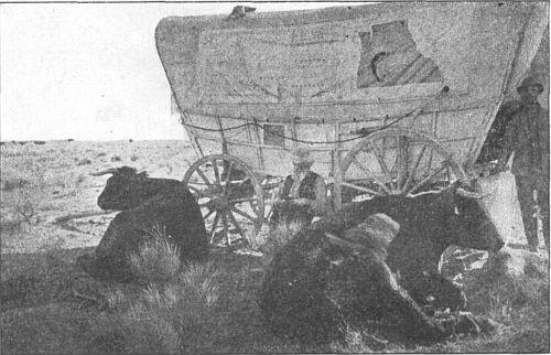 Nooning beside the prairie schooner.