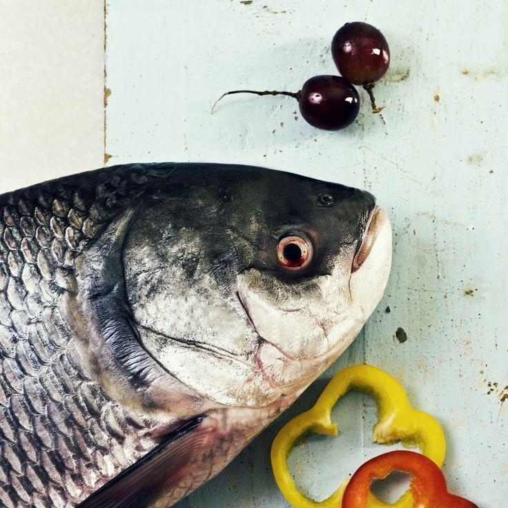 25 best images about fresh fish online on pinterest red for Fresh fish online