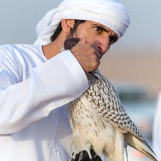 Sheikh Hamdan abraça com a mão direita um falcão com capuz marrom. Hamdan é um homem jovem, pele branca, rosto anguloso, sobrancelha reta e espessa, olhos amendoados castanhos escuros, nariz avantajado adunco; usa turbante e dishdasha(espécie de túnica larga e longa) alvíssimos. O falcão tem porte médio, plumagem creme densa, dorso rajado de marrom claro formando uma estampa que remete a pequenas folhas finalizando na cauda em geometrias ...