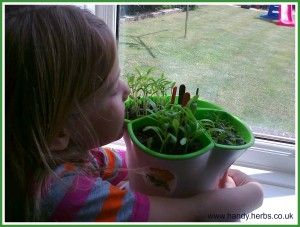 Encourage Little Green Fingers -Outside in the garden is a wonderful place to encourage play and learning. 7 reasons to get gardening with your child. Handy Herbs Kit For Kids.