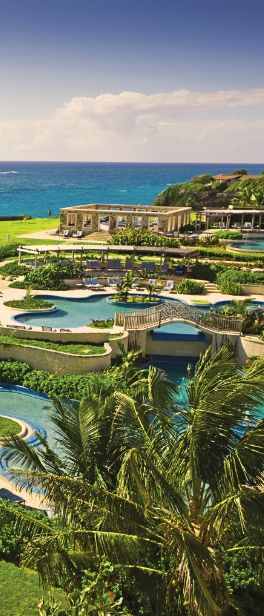 Bask in all that's #Barbados.