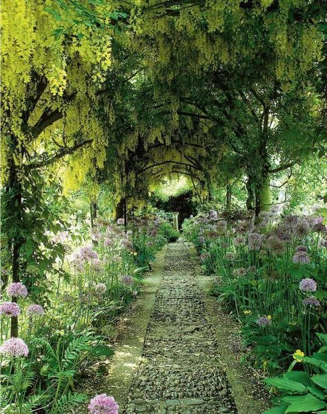 This laburnum and wisteria tunnel set around a riverstone path was created for Barnsley House by Rosemary Veney, one of the great landscapers celebrated in Women Garden…