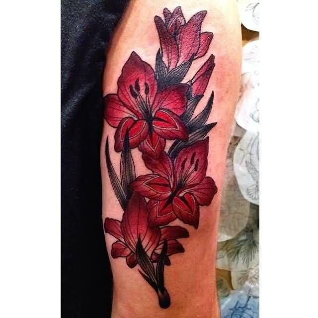 best 25 gladiolus tattoo ideas on pinterest gladiolas tattoo august flower tattoo and august. Black Bedroom Furniture Sets. Home Design Ideas