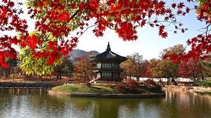 Image result for landscape photography in seoul korea