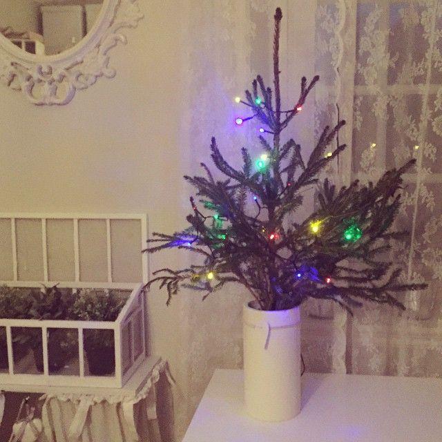Min fina lilla julgran! <3 Belysning Öob 29 kr! Kom och köp!! #julgran #öob #mys #barr