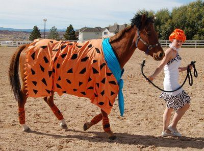 Braymere Custom Saddlery: Halloween with Horses-Horse Costumes  Fred and Wilma flinstone