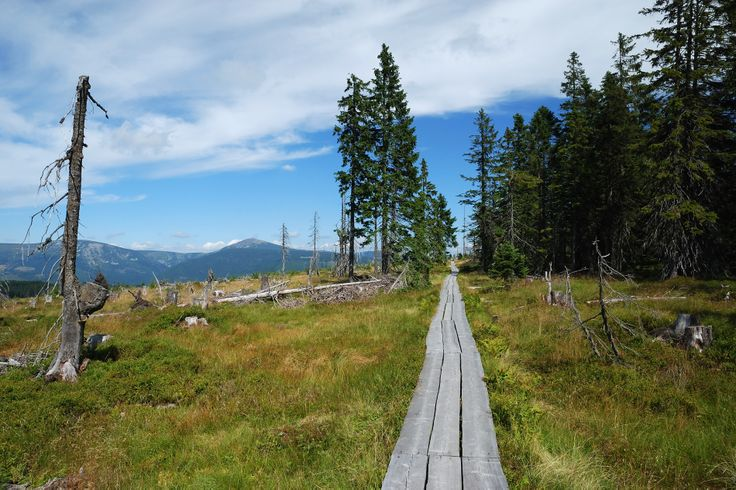 Krkonoše National Park - real paradise for hikers and bikers in summer and skiers in winter! #Czech Republic