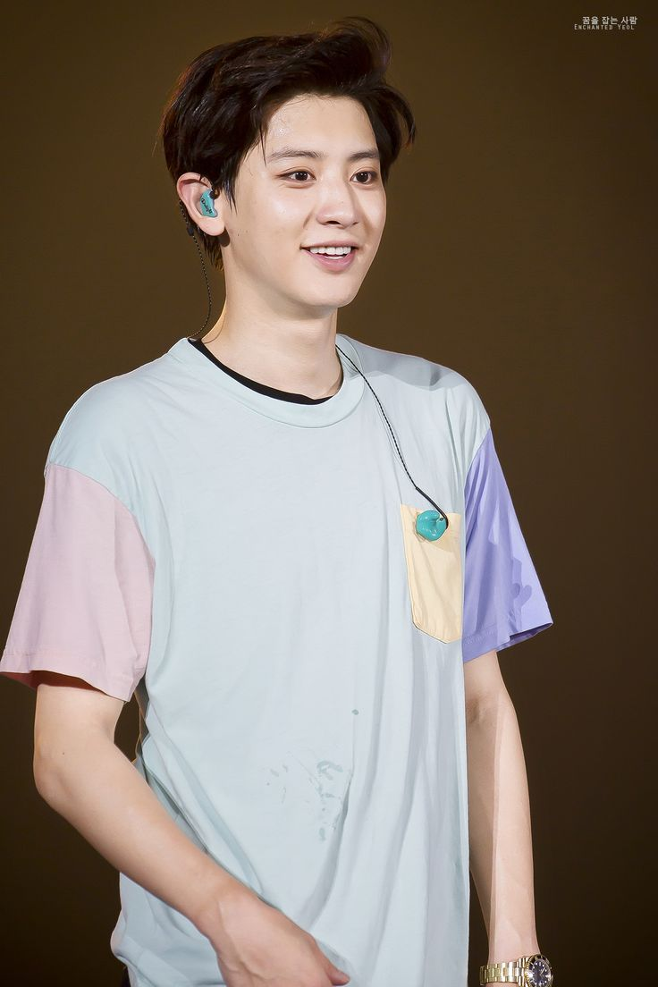 EXO'luXion 150817 : Chanyeol