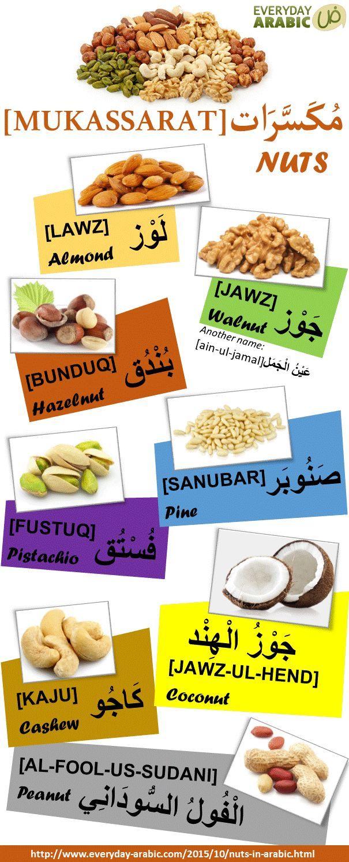 Educational infographic : EVERYDAY ARABIC العربية لكل يوم