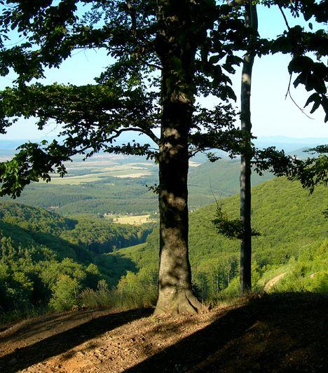Galyatető, Mátra A Kékestető mellett a Galyatető is hazánk legmagasabban fekvő pontjai közé tartozik. A Mátraszentimréhez tartozó csúcs télen-nyáron népszerű kirándulóhely, a síelés szerelmesei számára épp olyan vonzó úti cél, mint a túrák és a friss hegyi levegő kedvelőinek.