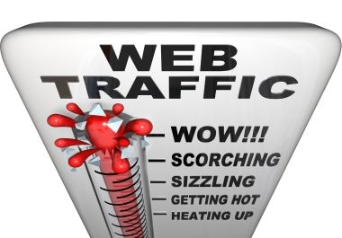 Real human visitors to your website, 200+ daily vi... for $5