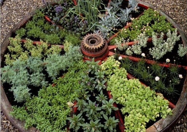 best 25 herb garden design ideas on pinterest plants by post small garden vegetable design and mother earth gardens - Herb Garden Design Ideas