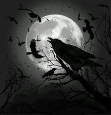 """Résultat de recherche d'images pour """"corbeau"""""""