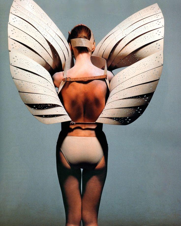 wings wings wings