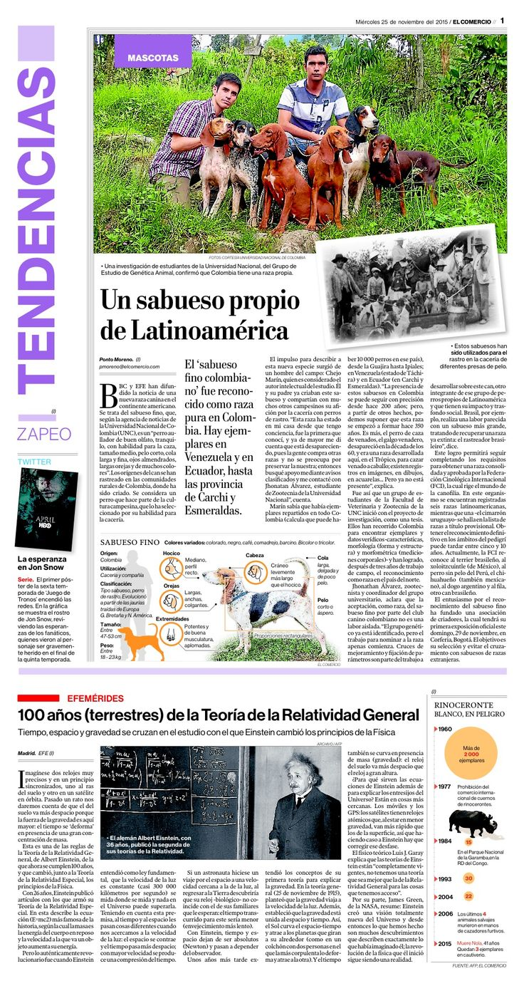 Un sabueso propio de Latinoamérica. El sabueso fino colombiano fue reconocido como raza en Colombia. Artículo de diario El Comercio de Quito. Edición del 25/11/2015.