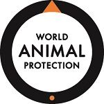 Factory Farmed Animals - World Animal Protection