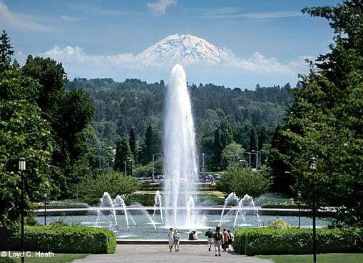 University of Washington campus.  I still remember the first day I saw Mt. Ranier looming over this fountain.
