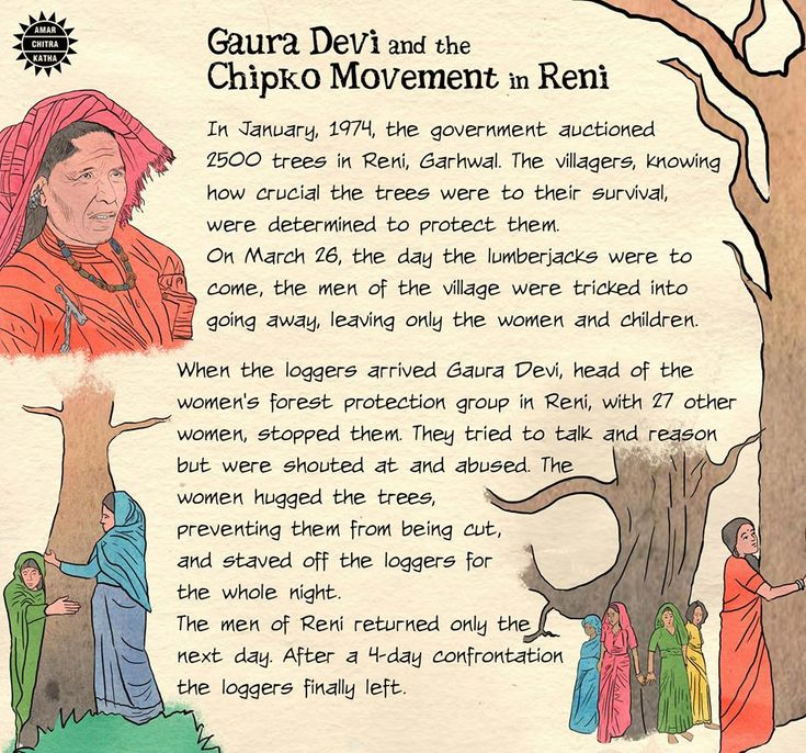 The Reni Chipko Movement, in 1974, gave a new impetus to
