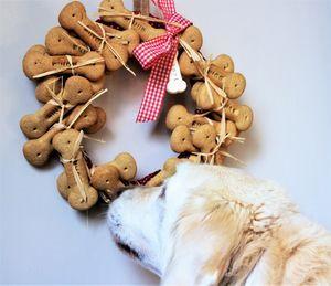 Personlised Dog Advent Calendar - food, feeding & treats