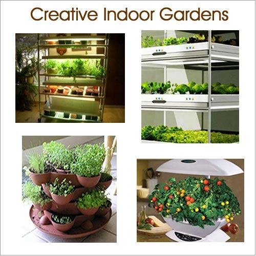 1000 ideas about indoor vegetable gardening on pinterest growing vegetables indoors growing. Black Bedroom Furniture Sets. Home Design Ideas