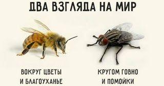 Блог-дайджест Vyacheslavа Mazurenko : Несовместимость: Два русскиx мира, два языка, две ...
