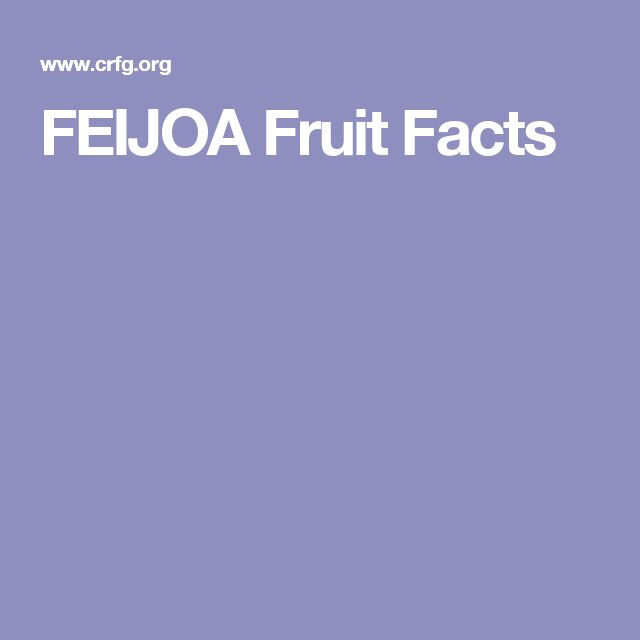 FEIJOA Fruit Facts