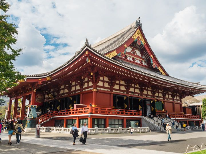 Traveling To Japan Alone What You Need To Know Tokyo Japan Travel Guide Japan Travel Destinations Tokyo Japan Travel
