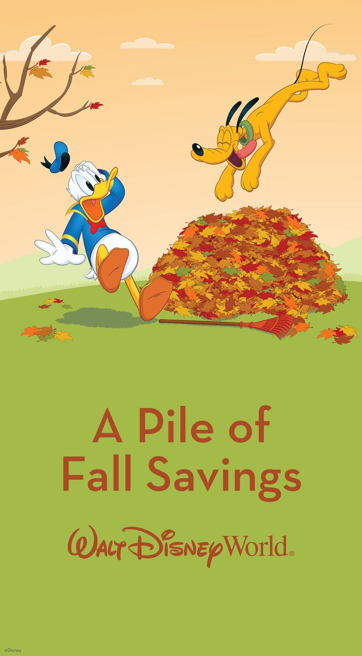 You can save up to 25% on rooms at select Walt Disney World Resort hotels this fall! For stays most nights 10/11-10/15, 10/18-10/22, 11/1-11/7, 11/22-11/24 and 11/28-12/23/15. Other great savings also available for stays most nights 10/4-11/24 and 11/28-12/23/15. Book between 7/20 and 9/18/15.  For more information, see: http://www.buildabettermousetrip.com/discounts-and-promotions/