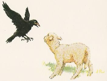 Aesop The Raven the Swan | The Raven Who Would Rival The Eagle Aesops Fables Stories with Morals