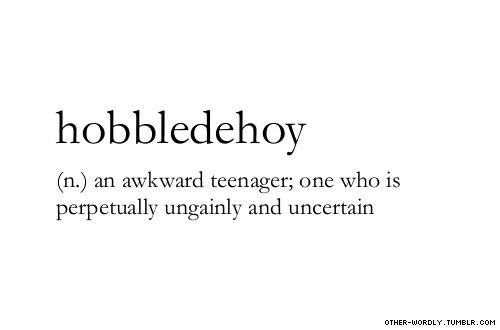 HOBBLEDEHOY! I'm dying!  It sounds hilarious, it looks hilarious, and the way it describes me is hilarious!