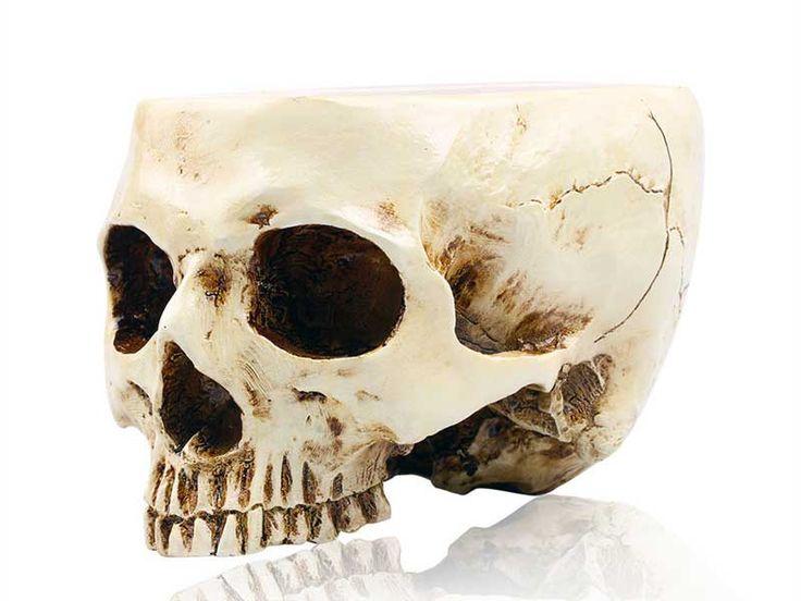 Цветочные горшки в виде человеческого черепа на Алиэкспресс