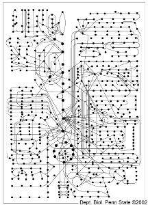 Energy I - Thermodynamics - BIOL110F2012 -Confluence
